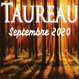 Taureau septembre 2020