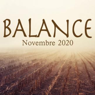 Balance Novembre 2020