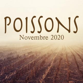 Poissons Novembre 2020