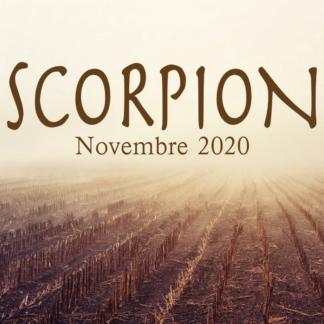 Scorpion Novembre 2020