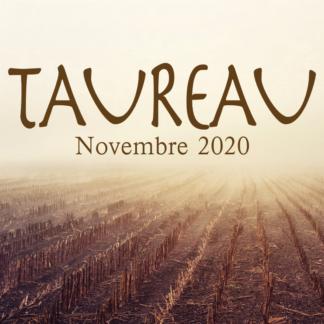 Taureau novembre 2020
