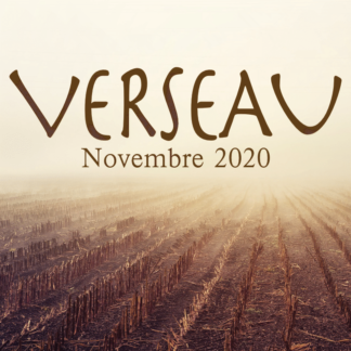 Verseau Novembre 2020