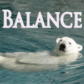 Balance Décembre 2020