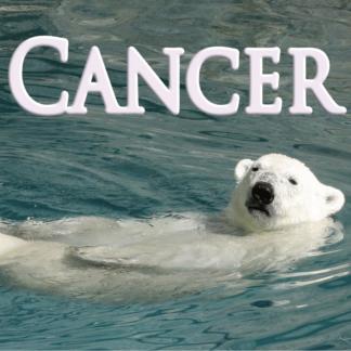 Cancer Décembre 2020