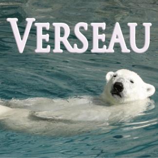 Verseau décembre 2020
