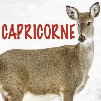 Capricorne 2021 1ère partie