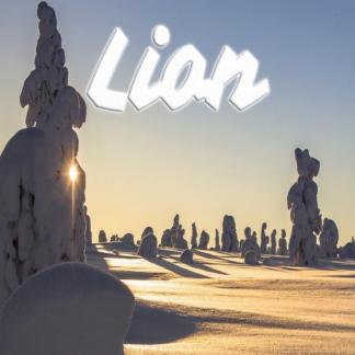 Lion janvier 2021