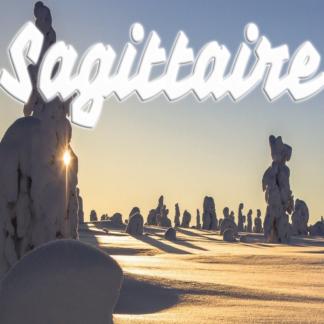 Sagittaire janvier 2021