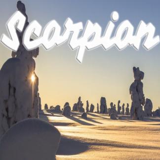 Scorpion janvier 2021