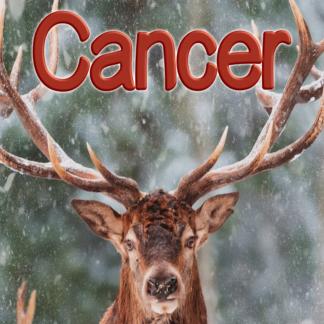 Cancer février 2021