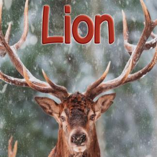 Lion février 2021