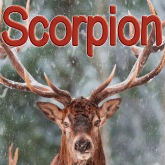 Scorpion février 2021