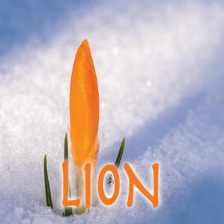 Lion mars 2021