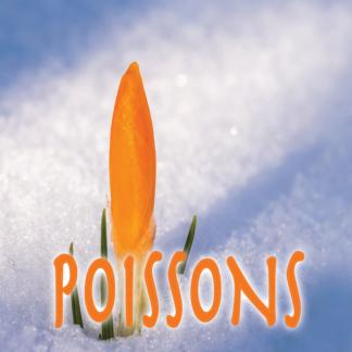 Poissons mars 2021