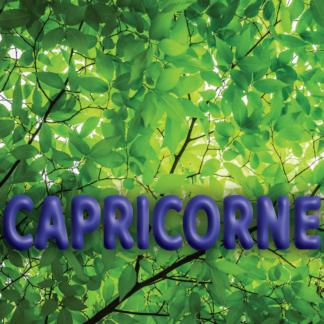 Capricorne avril 2021
