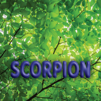 Scorpion avril 2021