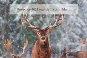 Nouveau tarif pour les extensions projection 2021